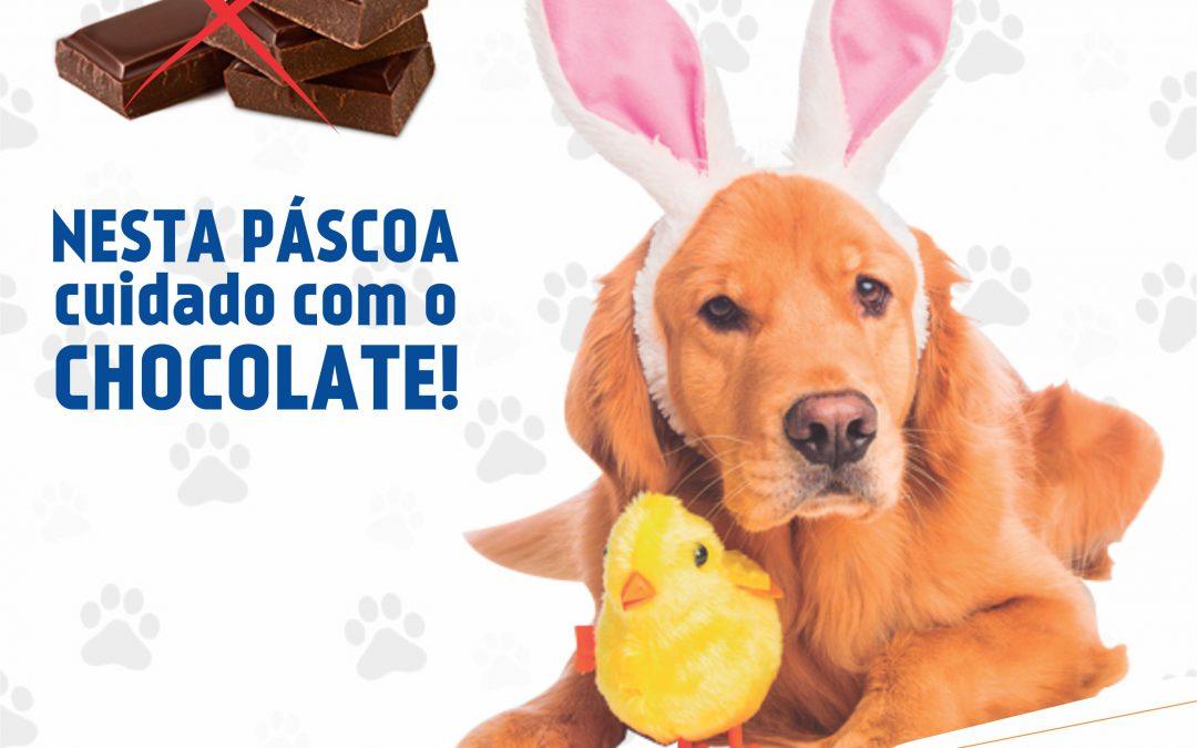 Cuidado com o Chocolate